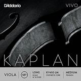 Kaplan Vivo