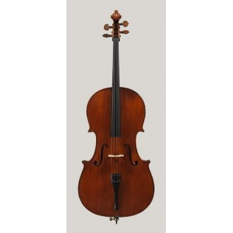 """Мастеровая виолончель """"Giuseppe Rocca"""" копия"""