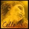 Струна Ре PIRASTRO Evah Pirazzi Gold для виолончели