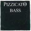 Комплект струн для контрабаса Pirastro Pizzicato