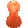 Виолончель 4/4 Romanian Concerto