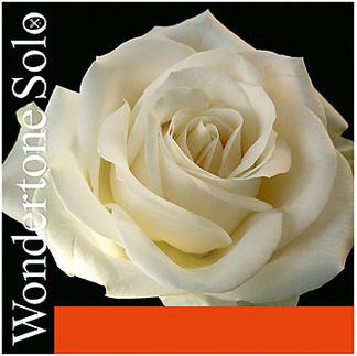 Струна для скрипки Ля PIRASTRO Wondertone Solo