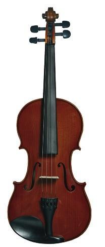 "Скрипка ""Andantina"""